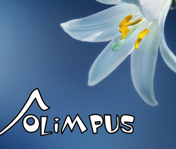 Nasi uczniowie laureatami olimpiady z języka angielskiego Olimpus – sesja wiosenna!